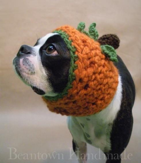 The Great Pumpkin Dog Hat by Beantown Homemade